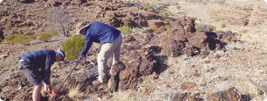 Representative channel sampling of Big Hill gossan material on Core Exploration's Yerelina Zinc Project in South Australia.